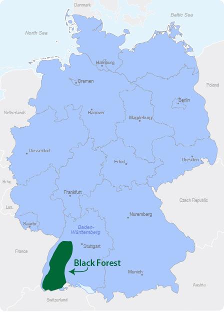 מפת היער השחור