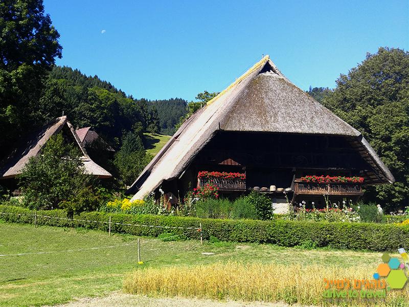 הכפר הפתוח ביער השחור