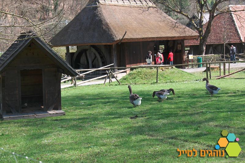 הכפר הפתוח- סלובקיה