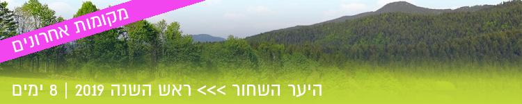 היער השחור ראש השנה