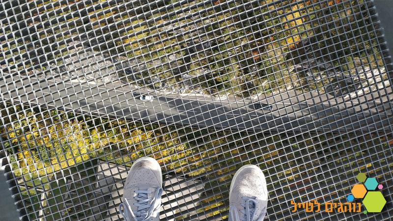 גשר אוסטריה