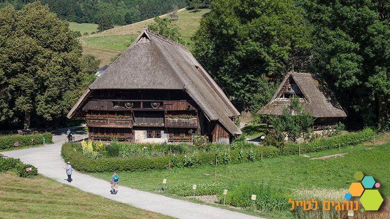 כפר פתוח ביער השחור